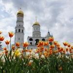 Весенние каникулы в Москве 3 дня
