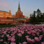 Весенние каникулы в Москве 5 дней