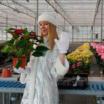 """Агрохолдинг """"Московский"""". Программа """"В гостях у новогоднего цветка"""""""
